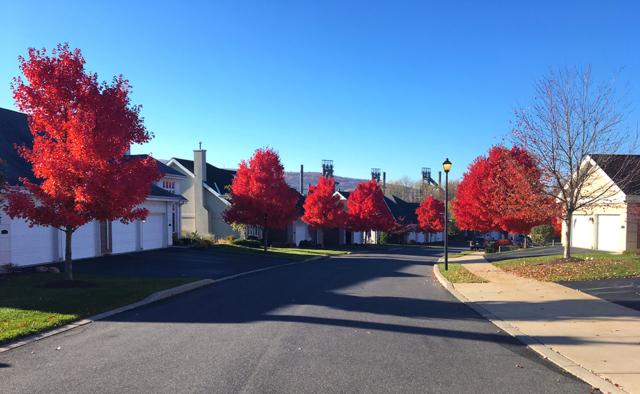 Moravian Village Fall